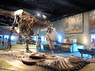 mpchi055dinosaurs