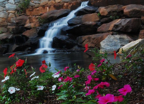 park pink flowers red color fall water oneaday landscape waterfall nikon photoaday pictureaday d40 favoritegarden