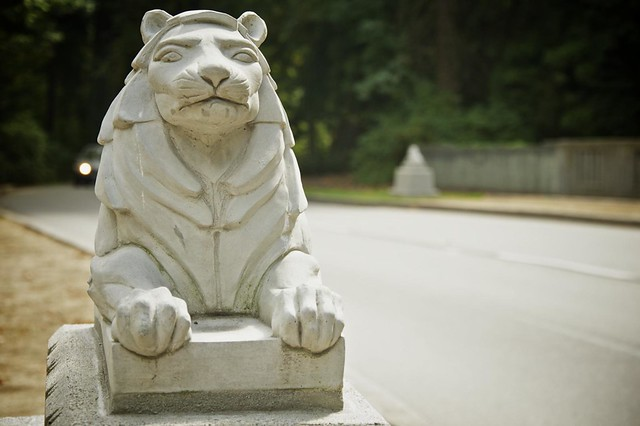 Lion Statues on Stanley Park Drive