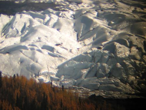 Extreme closeup through binoculars