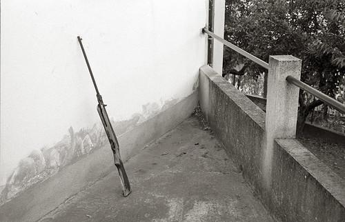 An Old Gun, Vila Boa