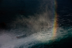 OMG Rainbow