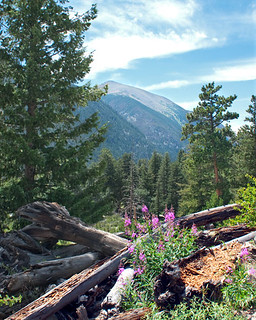 Rocky Mountain National Park, Colorado Landscape