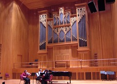 musician, organ pipe, keyboard, organ, pipe organ, wind instrument,