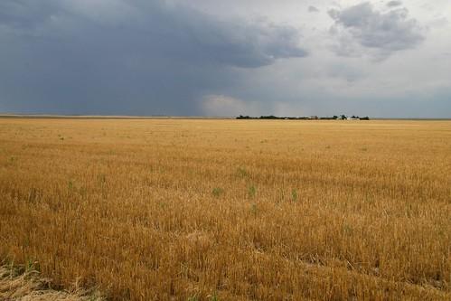 field clouds nebraska farm wheat grandpa thunderstorm stubble expanse chappell deuelcounty