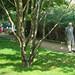 Park Georges Brassens, Paris 15e