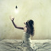 the light collector by brookeshaden