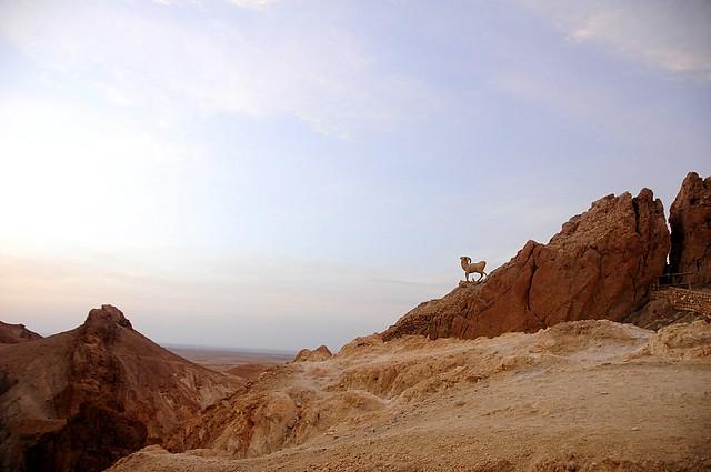 Las maravillas del desierto del Sahara 5107615135_422e24b68e_z