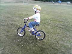 bicycle motocross, wheel, vehicle, bmx bike, sports, race, freestyle bmx, sports equipment, cycle sport, bicycle,