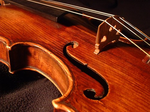 Violin -- closeup