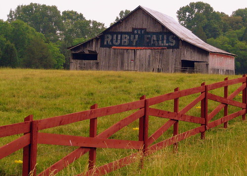 See Ruby Falls and Jefferson Island Salt Barn