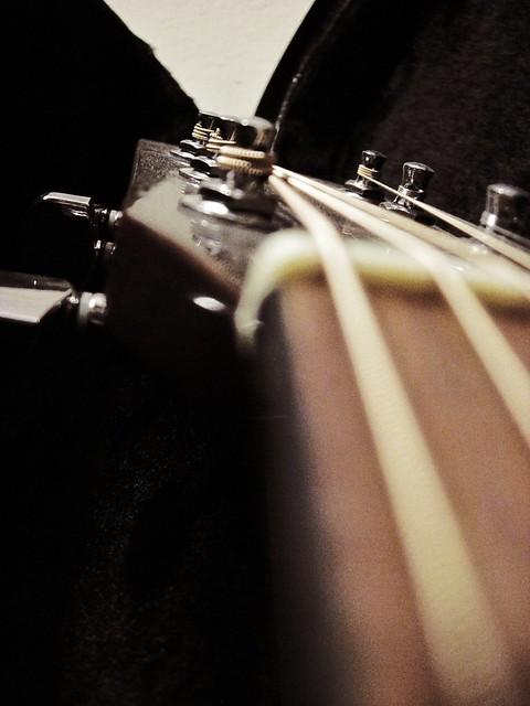 Photo:Fender By stephaniezens