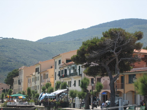 image_circolo_della_vela_marciana_marina_associazione_sportiva_dilettantisti
