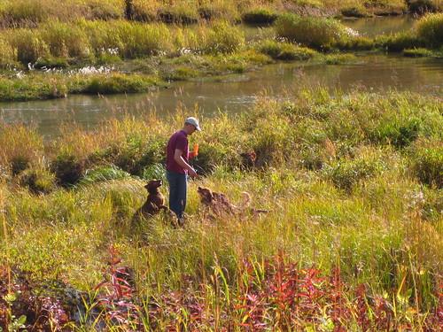 alaska, vacation, autumn, scenary, landscap… IMG_0358.JPG