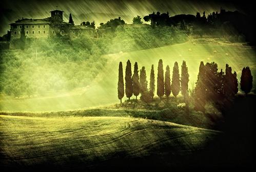 italy texture rural canon landscape italia view country campagna tuscany siena toscana ville landascape asciano 500d senese cipressi trequanda dylan66