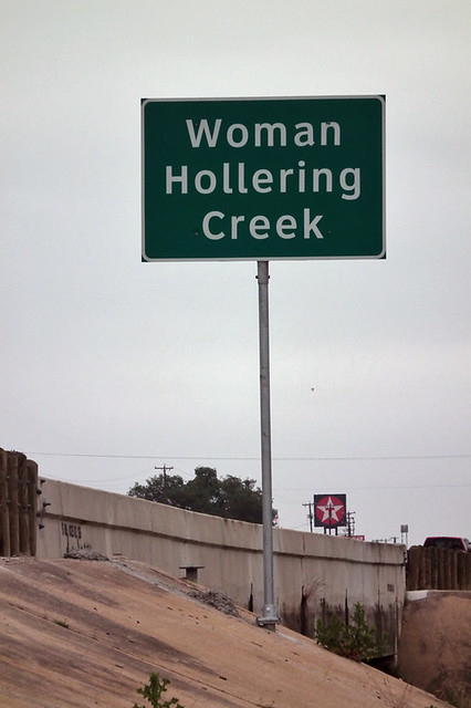 critical essay on woman hollering creek