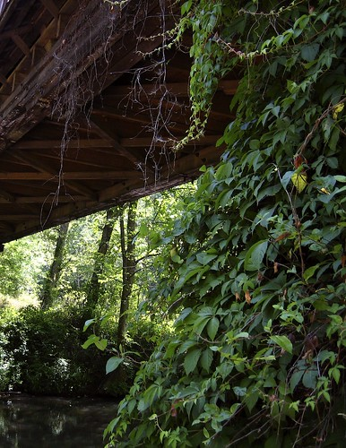 Covered Bridge at Waldo