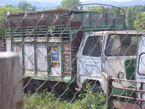 Hist ries del transport per carretera de catalunya d for Oficina 3060 la caixa