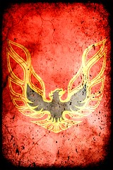 Firebird Grunge Iphone Wallpaper Designed For Iphone 4 Flickr