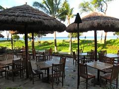 restaurant, eco hotel, resort,
