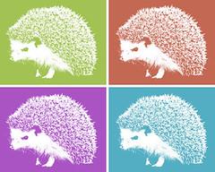 animal, domesticated hedgehog, organism, erinaceidae, illustration,