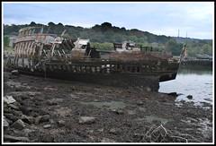 Wooden shipwreck at Hooe Lake
