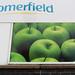 Somerfield challenge