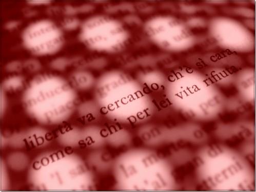 red rouge freedom peace monks pace myanmar rosso soe paix nomorewar 1000views libertà dantealighieri givepeaceachance solidarietà monaci birmania freeburma 100faves myriam70 libertàvacercando theroadtoheaven goldstaraward freemyanmar birmanialibera