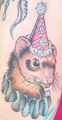 Ferret in A Party Hat!