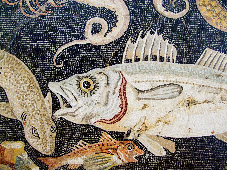 Marine mosaic detail, from a house in Pompeii (2nd century BC) by Chris Beckett, on Flickr Creative Commons