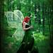 Forest fairy by katmary