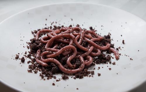 Worm Dessert