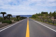 Sakurajima road