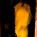 Small photo of Yellow Sari