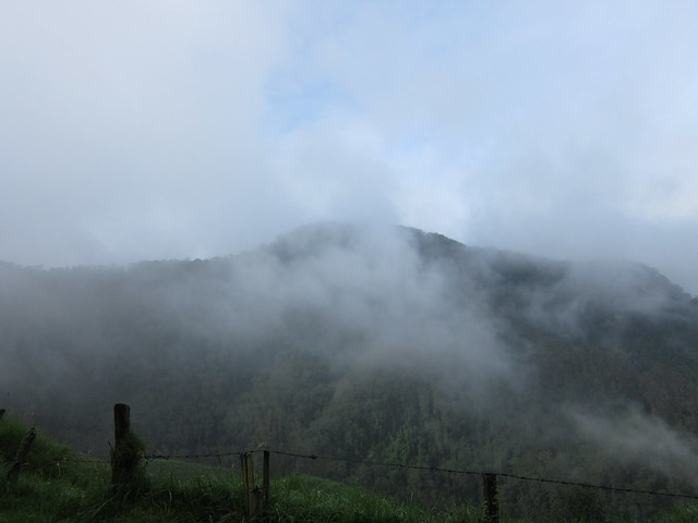 Camino al Parque Nacional de los Nevados