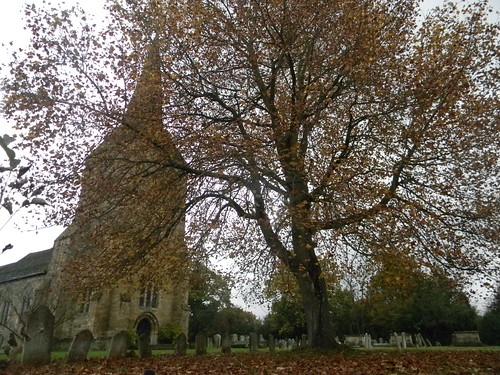 Hartfield Church...and tree