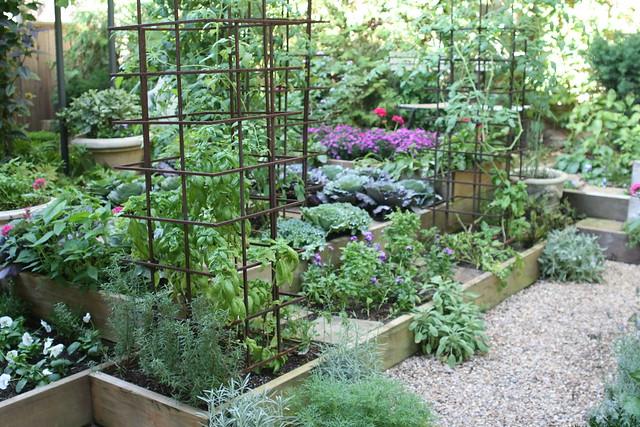 Kitchen Gardening Herb Light Cheap Timer