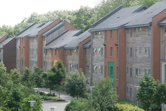API Limerick Housing