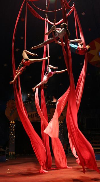 Circus Smirkus - On Fabric