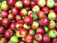 acerola(0.0), malpighia(0.0), plant(0.0), nectarine(0.0), produce(1.0), fruit(1.0), food(1.0), myrciaria dubia(1.0), apple(1.0),