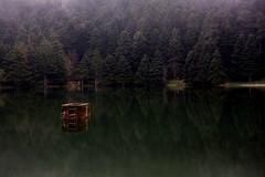 Golcuk Lake, Bolu, Turkey