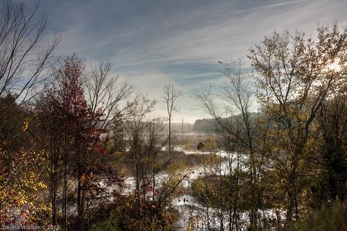 morning autumn trees light color fall water leaves fog creek sunrise canon golden nc northcarolina goldenhour chathamcounty worden 450d whiteoakcreek photocontestfall10 deniseworden