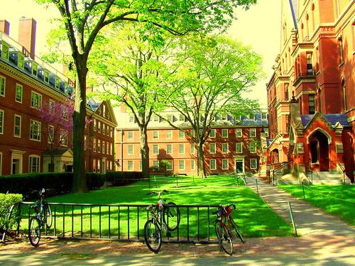 Inside Harvard Freshman Dorms Harvard College...