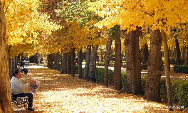 Jardines de aranjuez flickr photo sharing for Jardines aranjuez horario