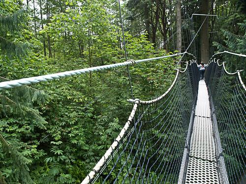 Canopy Hike - Swinging