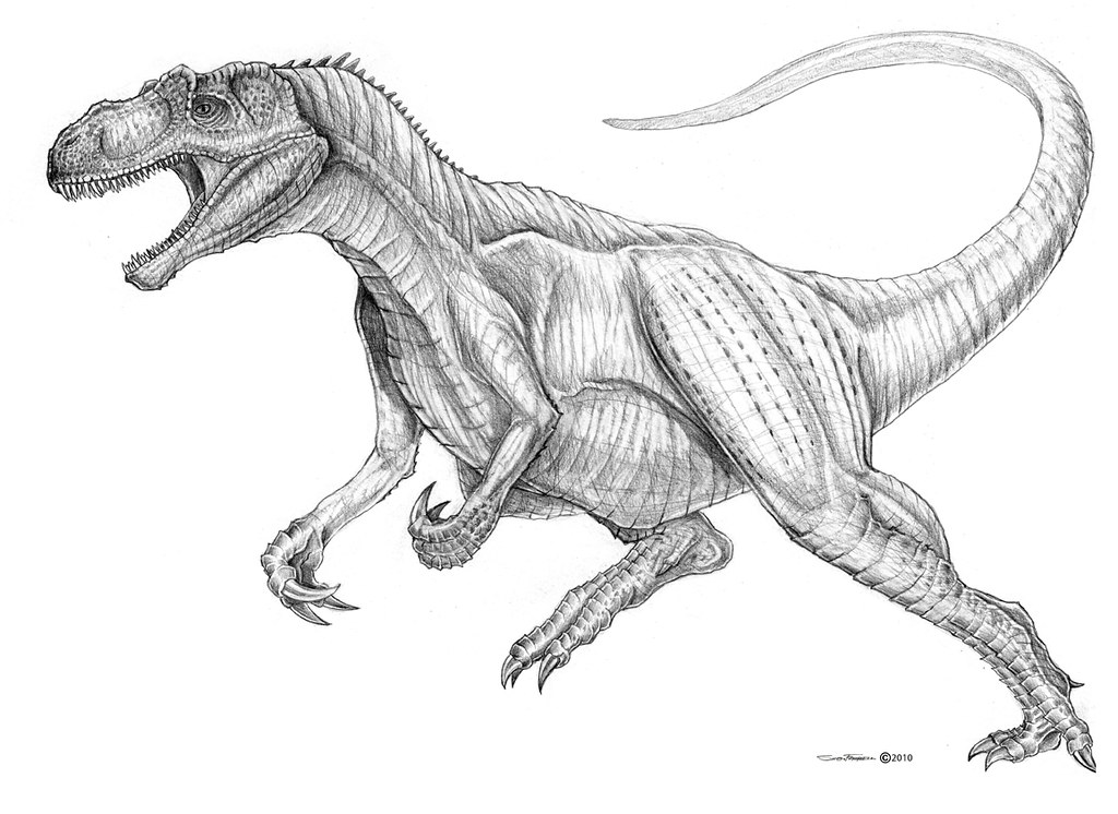 How To Draw An Allosaurus by Darkonator  DrawingHub