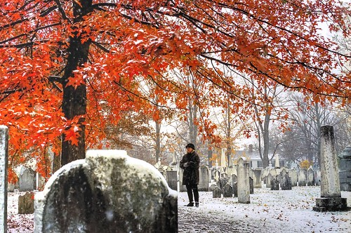 "travel autumn trees snow fall ice landscape maple vermont foliage bennington ""new england"" exoticimage"