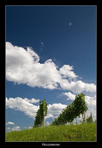 sky clouds austria vineyard heiligenbrunn