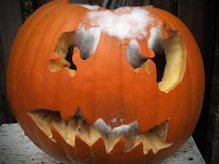 carving(1.0), pumpkin(1.0), halloween(1.0), calabaza(1.0), produce(1.0), winter squash(1.0), jack-o'-lantern(1.0), cucurbita(1.0),