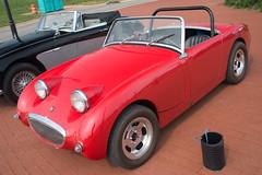 triumph tr3(0.0), tvr(0.0), automobile(1.0), vehicle(1.0), antique car(1.0), austin-healey sprite(1.0), classic car(1.0), vintage car(1.0), land vehicle(1.0), convertible(1.0), sports car(1.0),
